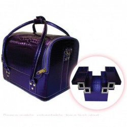 Beauty Tools Purple Case